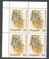 Guyana, 1987, Orchids, MNH Block, Michel C1750 - Guiana (1966-...)