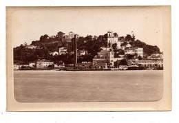 Rio De Janeiro. La Gloire Du Jardin Public. Photo Originale  Marc Ferrez. Marina Imperial E Da Commissao Geologica. - Rio De Janeiro