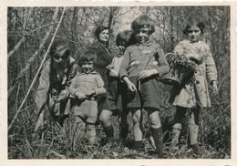 Snapshot Groupe D'enfants 1934 Forêt Du Der Cueillette De Fleurs Jonquilles - Persone Anonimi