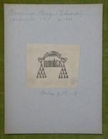Ex-libris Héraldique Illustré XIXème -  EDOUARDO BORROMEO ARESE (cardinal 1868, Mort En 1881) - Bookplates