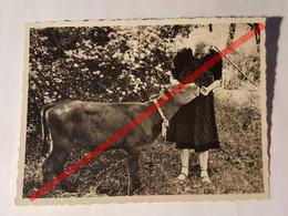 Photo Vintage. Original. Femme Et Veau. Lettonie D'avant-guerre - Objetos