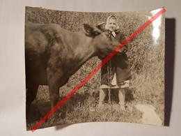 Photo Vintage. Original. Fille Et Vache. URSS - Objetos