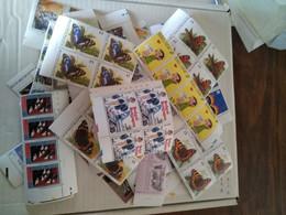 Lot De Timbres Belgique Neuf Xx - Collections
