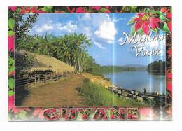 Guyane Meilleurs Voeux Photos Poux - Sin Clasificación