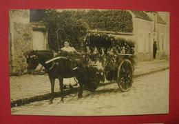 28 Epernon Carte-photo Fête Des Fleurs 1912 TB Animée Sans éditeur Dos Scanné N°4  Mint Superbe - Epernon