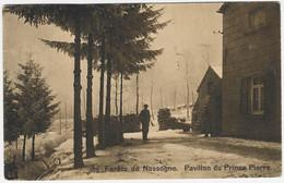 NASSOGNE : Pavillon Du Prince Pierre - Petite Animation - 1919 - Nassogne
