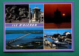 17 Ile D' Oléron ( Multivues, Vélos Couvert D' Huitres, Port Ostréicole ) - Ile D'Oléron