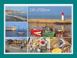 17 Ile D' Oléron ( Multivues, Phare Cotiniere, Chassiron, Port, Fort Boyard, Huîtres ) - Ile D'Oléron