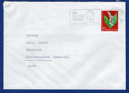 Beleg (aa6267) - Covers & Documents
