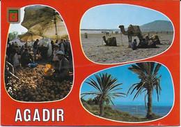 Agadir - Multi Vues : Souk, Plage - Agadir