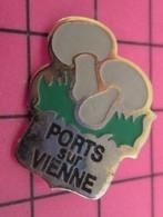 1116B Pin's Pins / Beau Et Rare / THEME : VILLES / CHAMPIGNONS DE PARIS PORTS SUR VIENNE - Cities