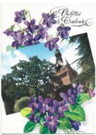 Toulouse 31 - Edition Loubatieres L 84 La Ville Rose Le Donjon Du Capitole Les Violettes De Toulouse - Toulouse