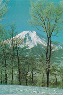Mont Fuji - From Oshino In Winter - Non Classificati