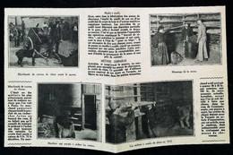 ►  France - Attelage Et Marchand De Crottes De Chiens - Tannerie -  Coupure De Presse Originale Début XXe (Encart Photo) - Documentos Históricos
