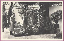 Orig.Foto AK Adolf Hitler Am Grabe Seiner Eltern ,Leonding - War 1939-45