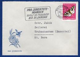 Beleg (aa6295) - Covers & Documents