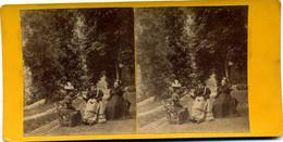 Photo Stéréoscopique - Auvergne - Royat - Parc  Bargoin ( H 158) - Photos Stéréoscopiques