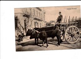 COSTUMI SICILIANI N 24 - Palermo