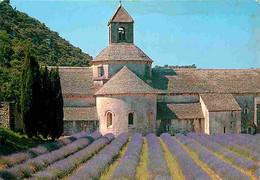 84 - Gordes - Abbaye De Sénanque - Champs De Lavande - CPM - Voir Scans Recto-Verso - Gordes