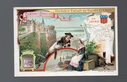Chromo  LIEBIG   :château D'AMBOISE ( 1 Image) (PPP27863F) - Liebig