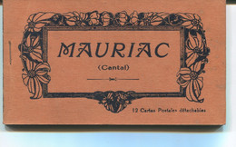 CARNET Complet De MAURIAC - 12 CPA Dont Animation - Edition Marion - Mauriac