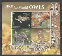 UU831 2019 !!! SALE TONGA FAUNA BIRDS OWLS MICHEL 78 EURO BL132 MNH - Eulenvögel