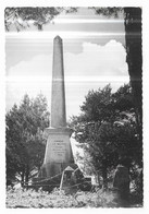 "Castelnau De Brassac "" La Pierre Plantée "" - Otros Municipios"