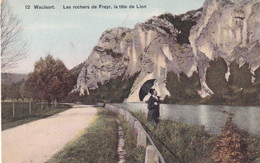 WAULSORT / LES ROCHERS DE FREYR /  LA TETE DU LION - Hastière