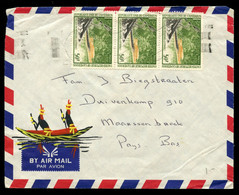 CAMEROUN - Cover Sent To Maarssenbroek, The Netherlands . Date Unclear Due To Cancelmachine Problems. - Cameroon (1960-...)