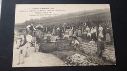 Vignoble De MOUCHARD - Le Clos De La Corne Aux Moines - JAVEL, Propriétaire - Altri Comuni