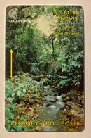 Rainforest - Saint Kitts & Nevis