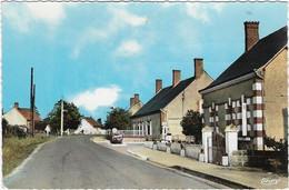 41    Neuvy   -  Rue Principale - Andere Gemeenten