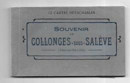 12073 - 74 - Carnet De COLLONGES SOUS SALEVE L.FAURAZ, éditeur à Annemasse - Other Municipalities