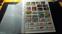 DM295 EMIRATS TOUS NEUFS *.* MNH A TRIER FORTE COTE DÉPART 10€ - Collections (with Albums)