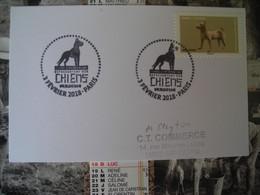 Oevres D'art En Volume Representant Des Chiens,art Chine - 2010-....