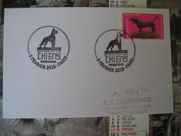 Oevres D'art En Volume Representant Des Chiens, Basset Anglais - 2010-....