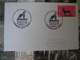 Oevres D'art En Volume Representant Des Chiens, Boston Terrier - 2010-....