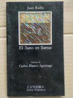 Juan Rulfo - El Llano En Llamas / Catedra,1986 - Other
