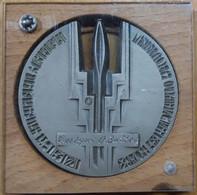 RUSSIE. MÉDAILLE MÉTALLIQUE AVEC SUPPORT EN BOIS. 1990.- LILHU - Unclassified