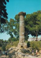 Gela - Colonna Dorica - Formato Grande Non Viaggiata – FE190 - Gela