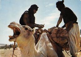 NIGER CHAMELIERS  33-0297 - Niger