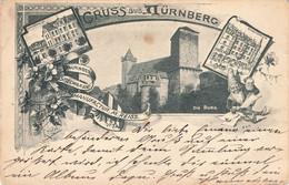 GRUSS AUS NURBERG - Andere