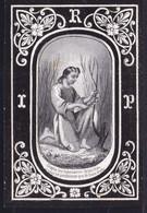 NOBLESSE - ADEL - IMAGE DE DECES * Adolphus Maria GRAEF ( Comte ) DE LICHTERVELDE 1805-1871 - Zeldzaam ! - Devotion Images