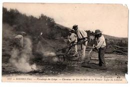 BORMES LE FLAMBAGE DU LIEGE TRES ANIMEE - Otros Municipios