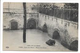 CPA 75 PARIS CRUE DE LA SEINE JANVIER 1910 JARDIN DES PLANTES MARTIN TRES ENNUYE  ELD   . TBE - La Crecida Del Sena De 1910