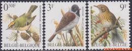 België 1991 - Mi:2476/2478, Yv:2424/2426, OBP:2424/2426, Stamp - XX - Birds Golden Rooster, Reed Bunting, Song Thrush - 1985-.. Vogels (Buzin)