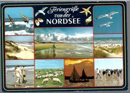 AK-99480  Nordsee - Mehrbild - (9) - Non Classificati