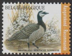 België 2020 - Mi:4958, Yv:4900, OBP:4912, Stamp - XX - - 1985-.. Vogels (Buzin)