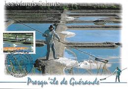 3883 - LES MARAIS SALANTS PRESQU'ILE DE GUERANDE, 1er Jour, 25-03-2006 GUERANDE (44) - MF - 2000-09
