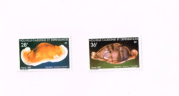 Coquillages.MNH,Neuf Sans Charnière. - Nuevos